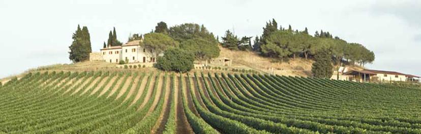 Weingut Col de Salici