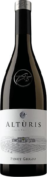 Pinot Grigio Friuli DOP 2017