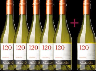 """""""120 Chardonnay 2019"""" 5+1 GRATIS Paket"""