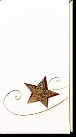 2er Geschenkkarton Creme Goldstern für 2 Flaschen 0,75 l