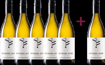 """""""Chardonnay Carnuntum DAC 2019"""" 5+1 GRATIS Paket"""