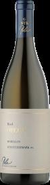Chardonnay Obegg GSTK 2015