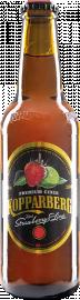 Kopparberg Erdbeere-Limette 24er-Karton