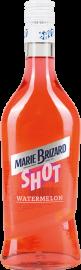 Marie Brizard Watermelon Liqueur