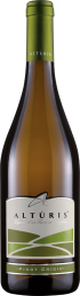 Pinot Grigio Friuli DOP 2018