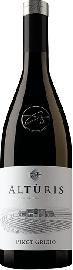 Pinot Grigio Friuli DOP 2019