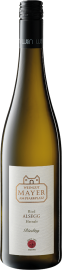 Riesling Ried Alsegg Hernals 2018