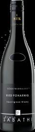 Sauvignon Blanc Ried Poharnig 1STK 2019