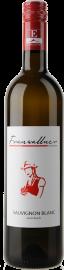 Sauvignon Blanc vom Buch 2014