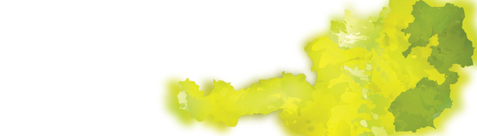 Weine - ALLE Vinorama & friends-Weine -20% 07-08/2017 - Slider
