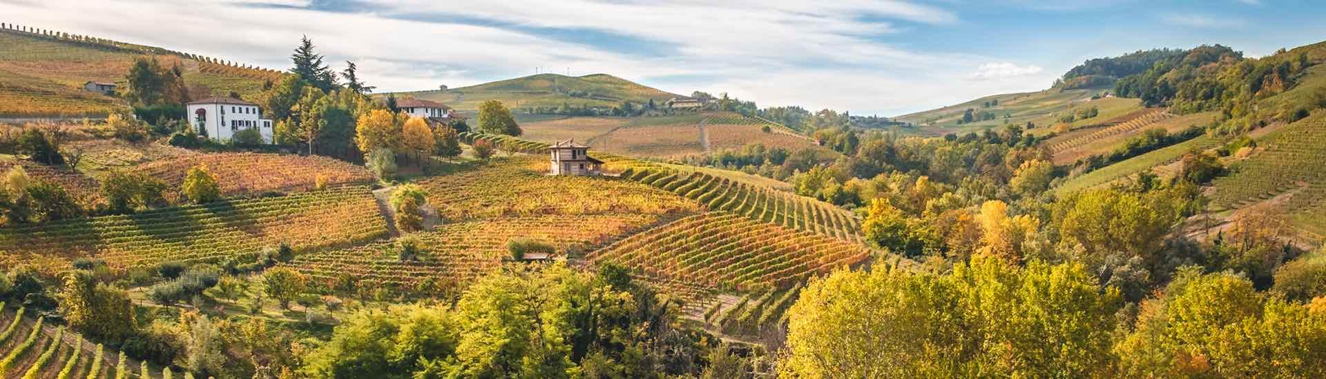 Weine - Piemonts Top-Winzer jetzt bis -20%! 10/2017 - Slider