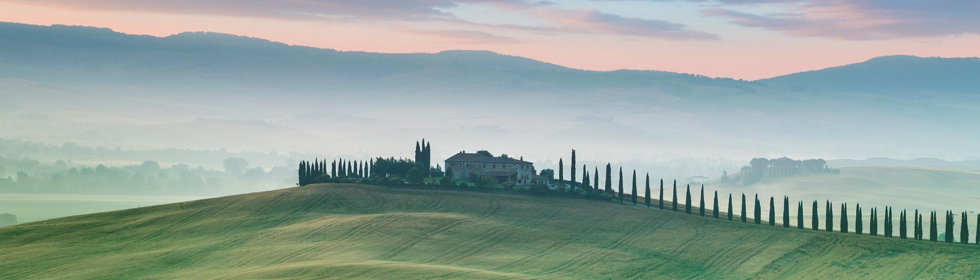 Weine - Hoch prämierte Super Tuscans jetzt um -20%! 11/2017 - Slider