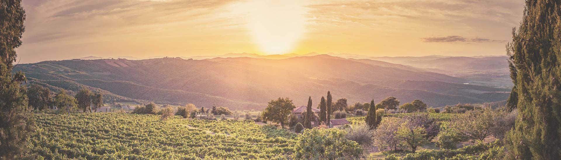 Weine - Brunello & Rosso di Montalcino bis -20% 04/2018 - Slider
