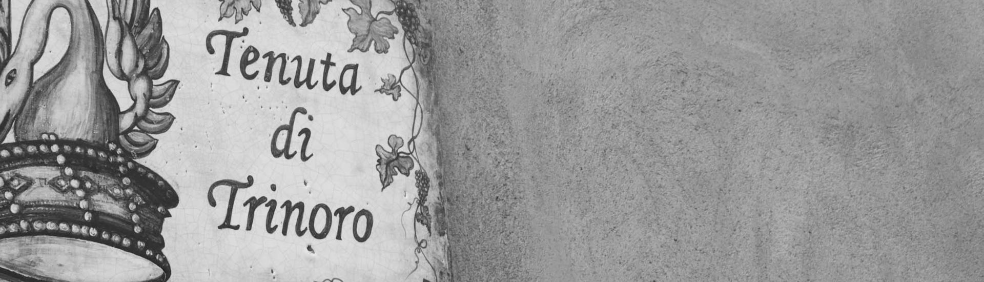Weine - Rarität des Monats: Tenuta di Trinoro 2015 04/2018 - Slider
