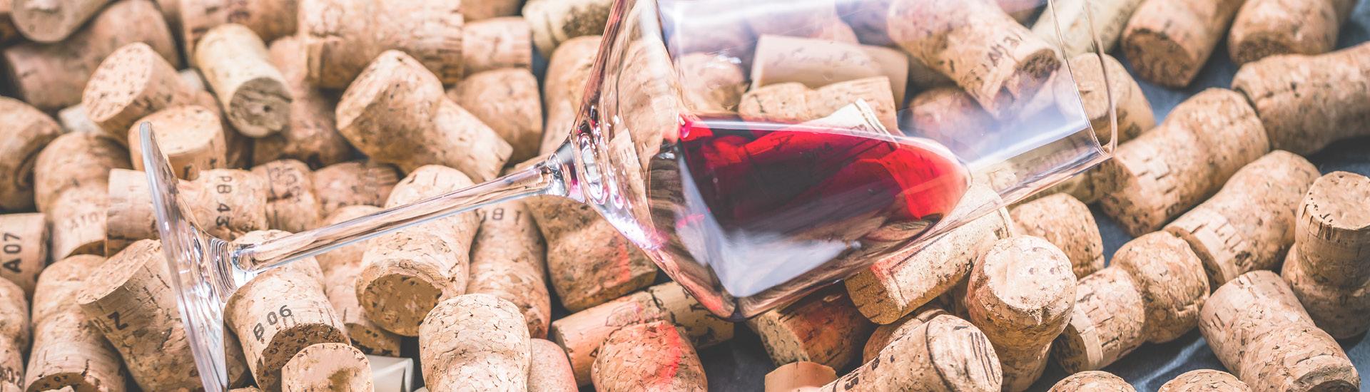 Weine - Edelrebsorte Pinot Noir bis -20% 09/2018 - Slider