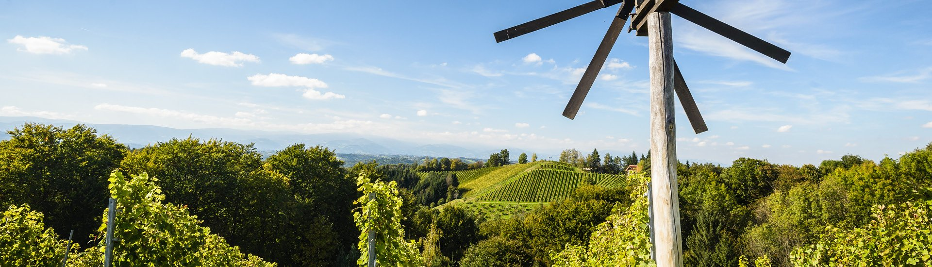 Weine - Vinorama on Tour: Steiermark DAC - die ersten Gebietsweine 04/2019 - Slider