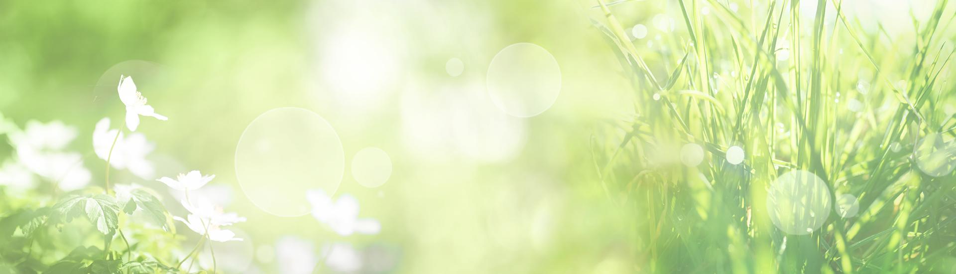 Weine - Auf ALLE Sauvignon Blancs -20%! 05/2019 - Slider