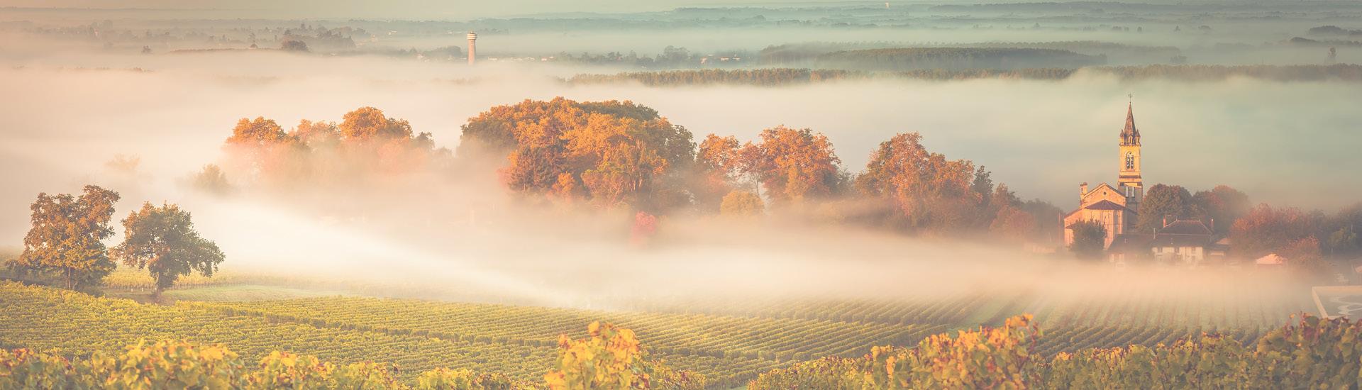 Weine - Bordeauxweine aus den TOP-Jahrgängen 2015 und 2016 02/2020 - Slider