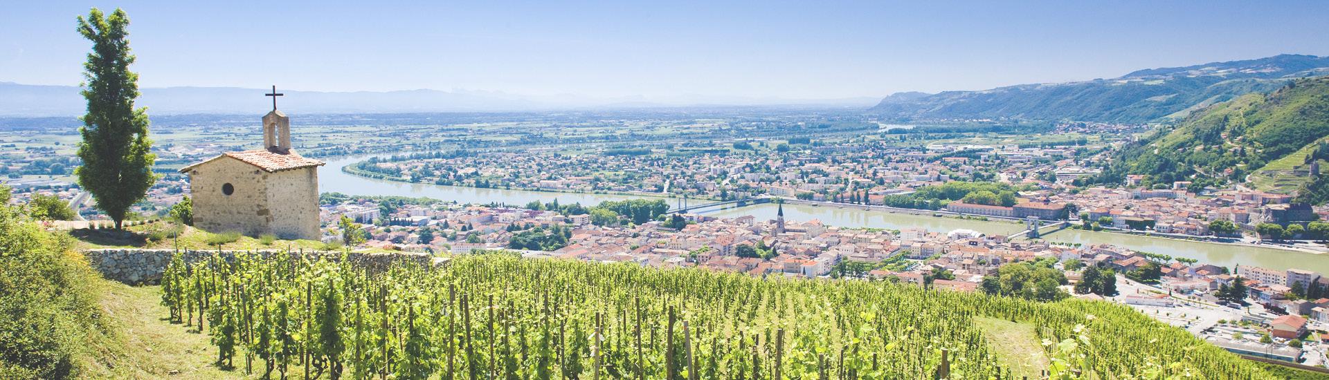 Weine - Weinbaugebiet Rhône - Feinste Weine aus Frankreich 05/2020 - Slider