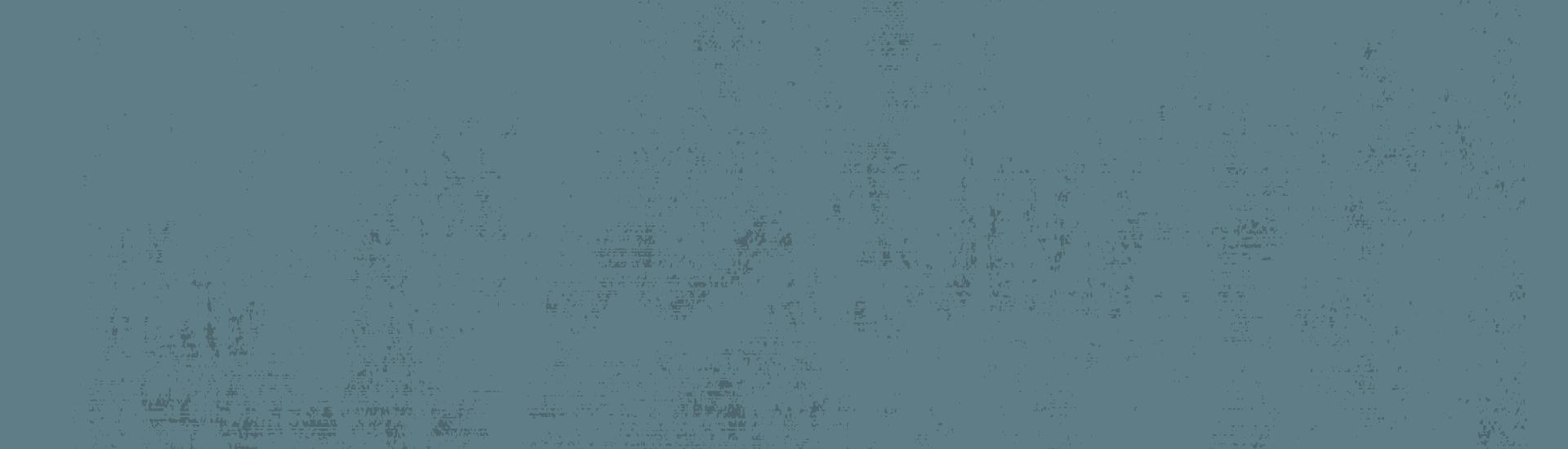 Weine - Unsere Bestseller & Lieblingsweine mit -20% 10-12/2020 - Slider