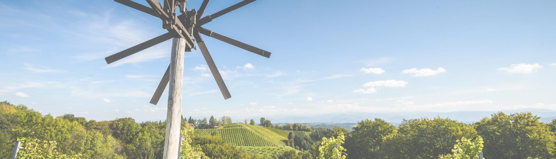 Weine - Genuss aus der Steiermark mit besten Lagenweinen 12/2020 - Slider