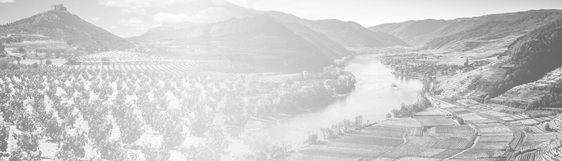 Weine - Vinorama Themen Pakete 04/2021 - Slider