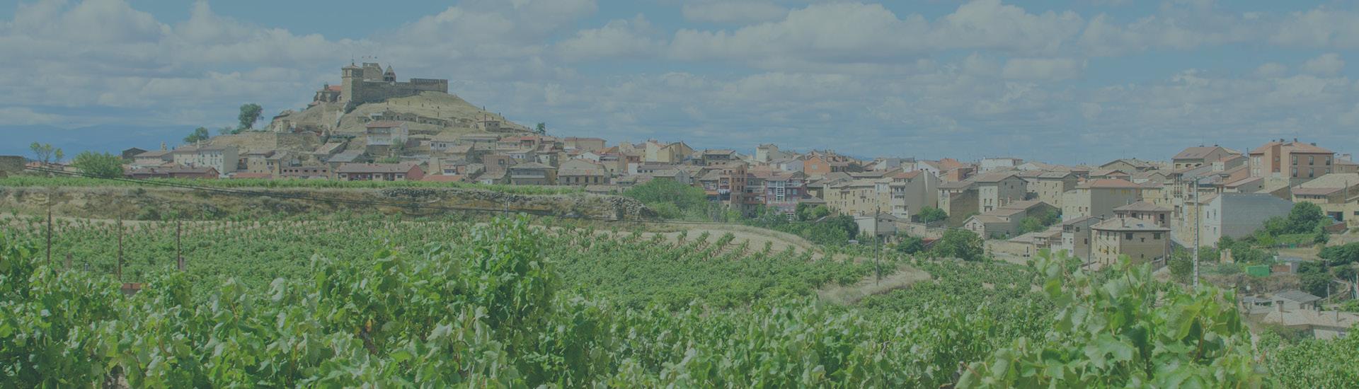 Weine - Genuss aus Spanien mit 20% Rabatt 05/2021 - Slider