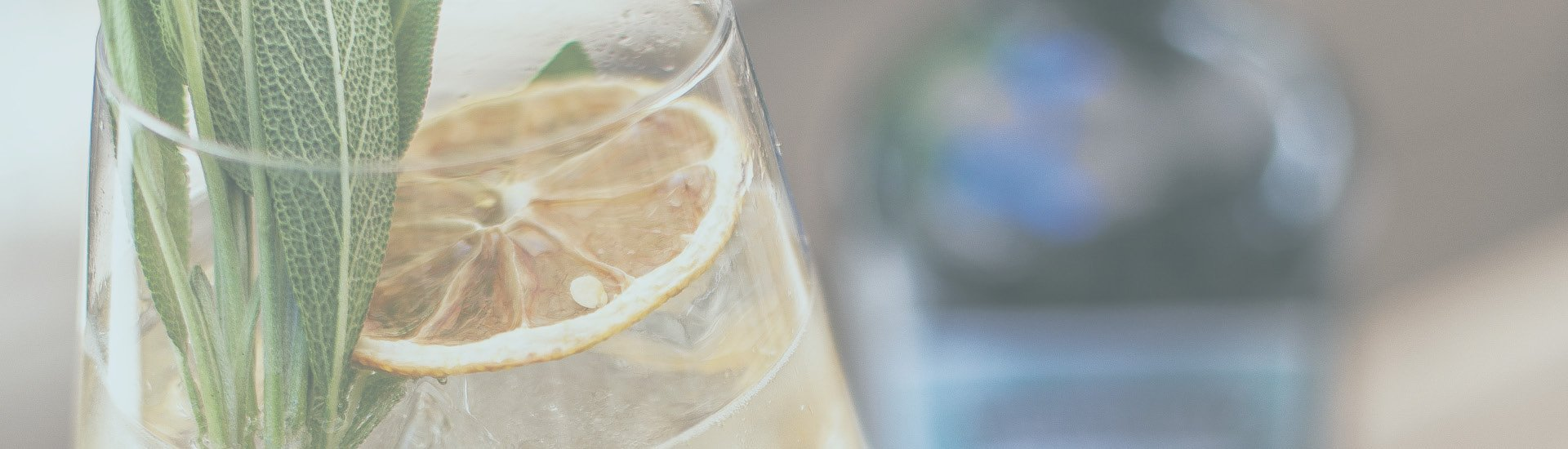 Spirituosen - Distillery of the Month: Ferdinand's Gin 06/2021 - Slider