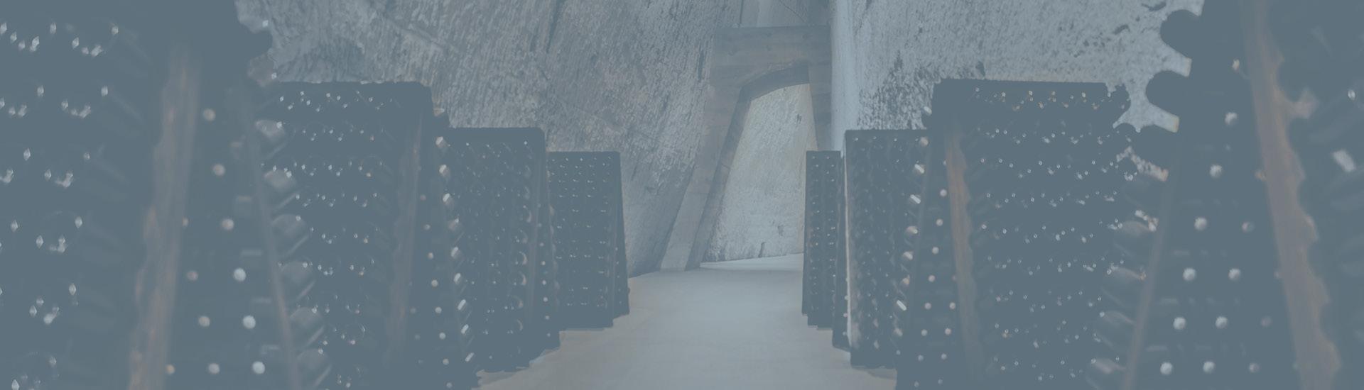 Weine - Vinorama on Tour: Unsere neuen Weingüter 06/2021 - Slider