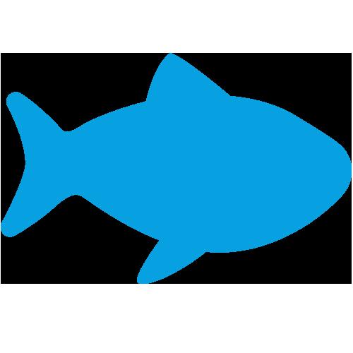 Fisch (Salz-/Süßwasser)